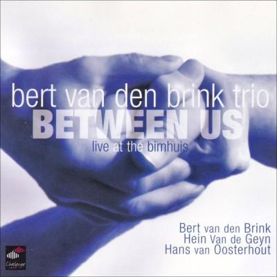 BRINK BERT VAN DEN: BETWEEN...