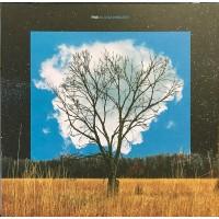 FINK: BLOOM INNOCENT-COLOURED LP