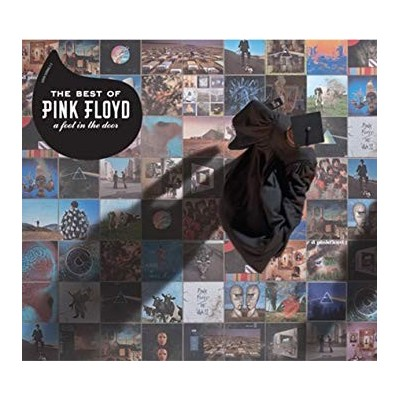 PINK FLOYD: A FOOT IN THE...